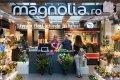 ClujInsider.ro: Cum a devenit Magnolia un superbrand în domeniul afacerilor cu flori